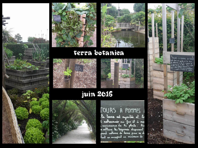 terrabotanicajuin20162
