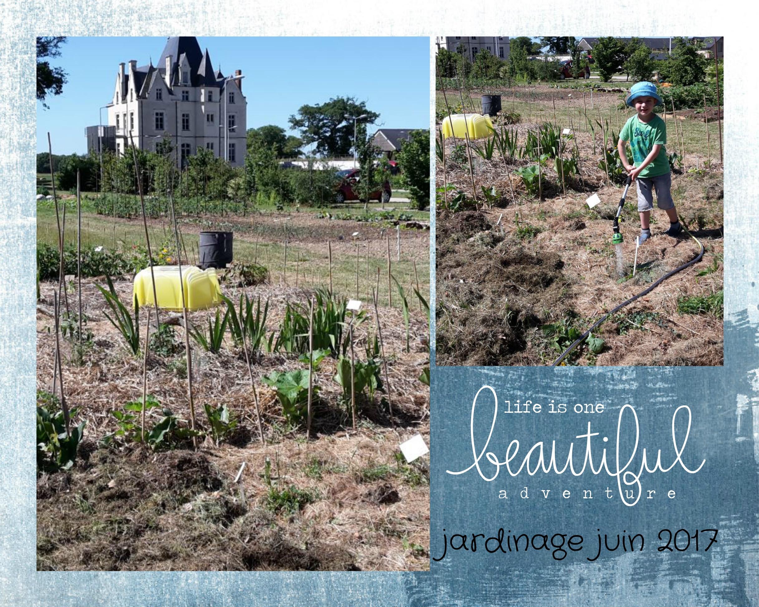 jardin juin 2017
